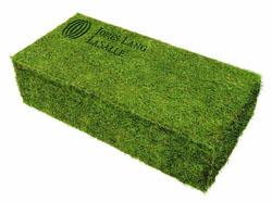 Groene Baksteen voor A'dam Toren