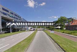 Naturalis koopt kantoor in Leiden
